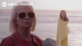 Animal Kingdom: Season 2 - Family [TRAILER] | TNT