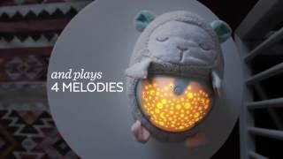 Ночник-проектор Skip Hop Moonlight & Melodies Hug Me Projection Soother