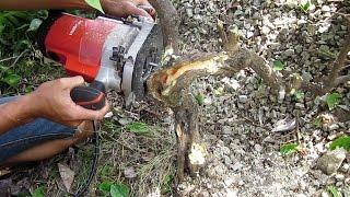 driftwood tree design with 1600w milling machine tạo dng lũa cho cảnh cy bằng my phay