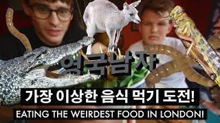 이상한 음식 먹방 도전: 벌레,악어,낙타,캥거루!! //  Eating Bugs,Crocodile,Kangaroo, and Camel!!