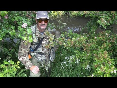 BARBEL FISHING A LOOK AT THE RIVER DEARNE - BROOMHILL - VIDEO 73