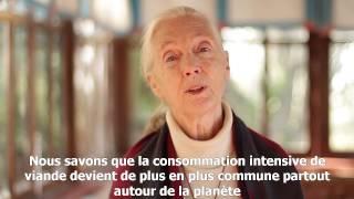 Question / réponse à Dr. Jane Goodall : Jane, êtes-vous végétarienne ?
