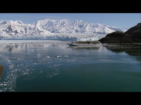 Royal Caribbean Answers The Call Of The Wild And Becomes First To ...
