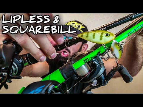 How To Choose A Combo- LIPLESS & SQUAREBILL Crankbaits (Hook, Rod, And Line For Beginners)