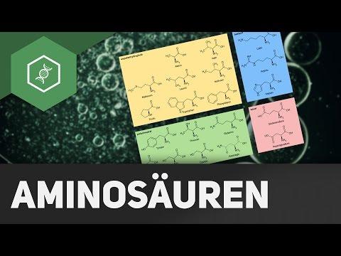 Aminosäuren: Aufbau und Gruppen ● Gehe auf SIMPLECLUB.DE/GO & werde #EinserSchüler