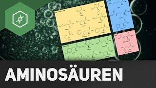 Aminosäuren: Aufbau und Gruppen