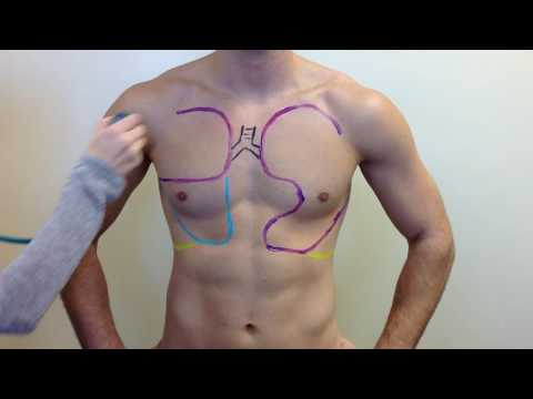 Breath Sound Lung Auscultations in 5 Minutes