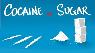 Cocaine vs Sugar