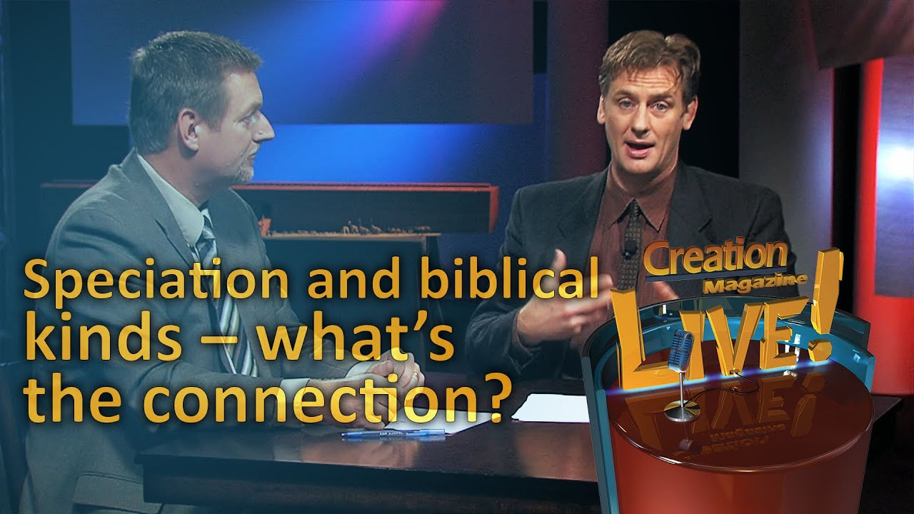 speciation and the biblical kinds u2013 what u0027s the connection