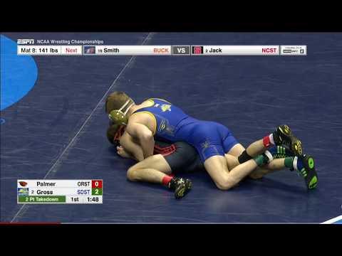 2017 NCAA Wrestling 133lbs: Seth Gross (South Dakota State) vs Joey Palmer (Oregon State)