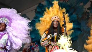Big Chief Monk Boudreaux & the Golden Eagles Mardi Gras Indians 2