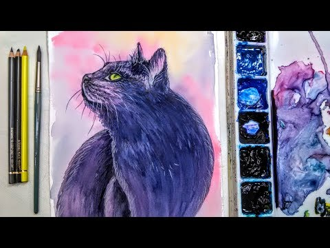 LIVE: Black Cat In Watercolor With Colored Pencil Highlights 12:30pm ET