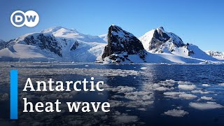Antarctica breaks 20-degree-Celsius barrier | DW News