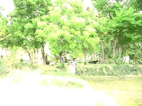 Trichi K.Sathanur agri land for sale.AVI