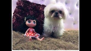 Baby Doll wakes up, washing and brushing teeth episodul II ,at Copilul destept