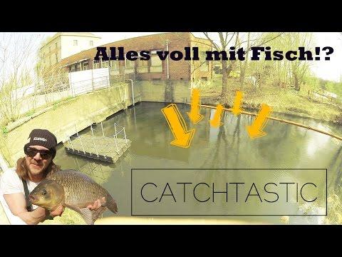 Streetfishing in Berlin angeln auf Friedfisch - mit der Stippe fischen im Kanal