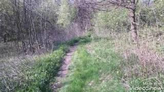 Skakanie w lesie z kolegą!