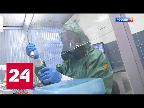 Россиянам посоветовали опасаться гриппа, а не коронавируса - Россия 24