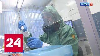 Смотреть видео Россиянам посоветовали опасаться гриппа, а не коронавируса - Россия 24 онлайн