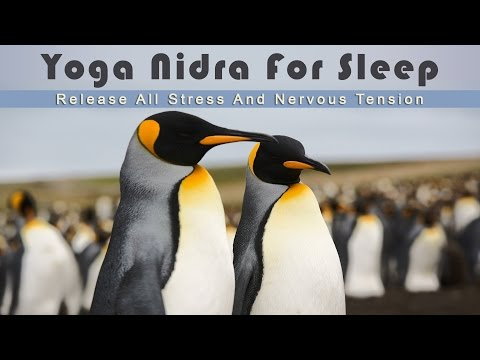 Yoga Nidra for Sleep - Release All Stress And Nervous Tension While Falling Asleep