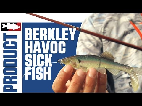 Berkley Havoc Skeet's Sick Fish Swimbait with Justin Lucas on Lake Guntersville