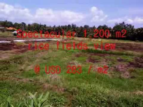 Property for sale in Bali, amazing land for sale in Canggu Bali -- TJCG126