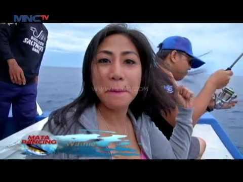 Goes to Seamount Reef Lampung - Mata Pancing (20/8)
