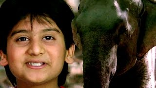 Anokha Aspatal - Hindi Dubbed Full Movies – Kids Jungle Film - Bollywood Latest Movies