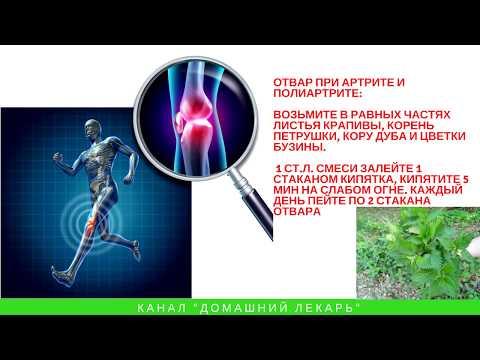 Как крапивой суставы лечить? Мастер-класс - Домашний лекарь - выпуск №84