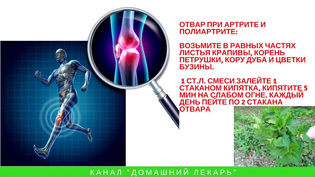 Лечение суставов крапивой