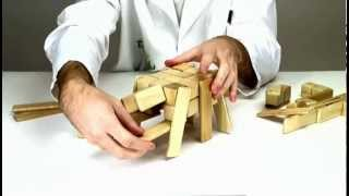 Wooden Toys From Tegu - Building A Tarantula