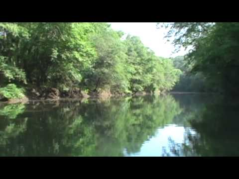 Kiss My Bass  Fishing Song