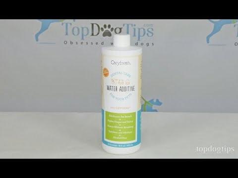 OxyFresh Dental Care Solution for Dogs Review