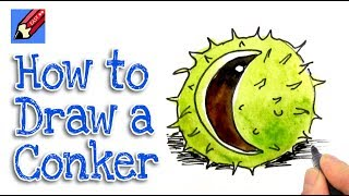 How to draw a Conker Real Easy