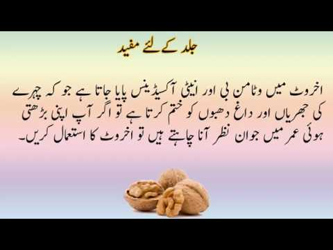 Image result for akhrot benefits in urdu