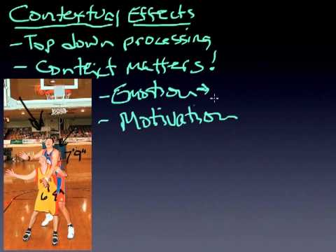 module17.3 contextual effects.mp4