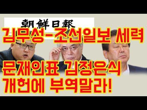 [정미홍칼럼]#42. 김무성-조선일보 세력이 개헌획책 중단해야 하는 이유!