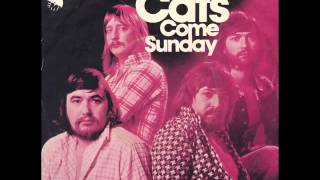 Watch Cats Come Sunday video