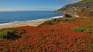 """""""The California Coast"""" (w Music) 1 HR HEALING Nature Relaxation Video w Music  1080p"""