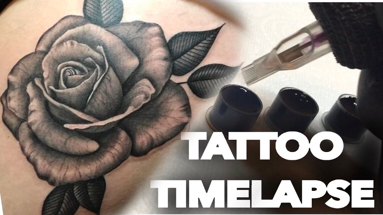 Tattoo Time Lapse Black N Grey Rose Chrissy Lee Youtube