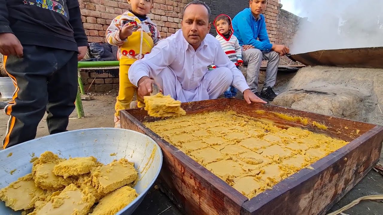 Organic Jaggery Powder Making Process | JAGGERY MAKING | Gurr Making | Village Life in Pakistan