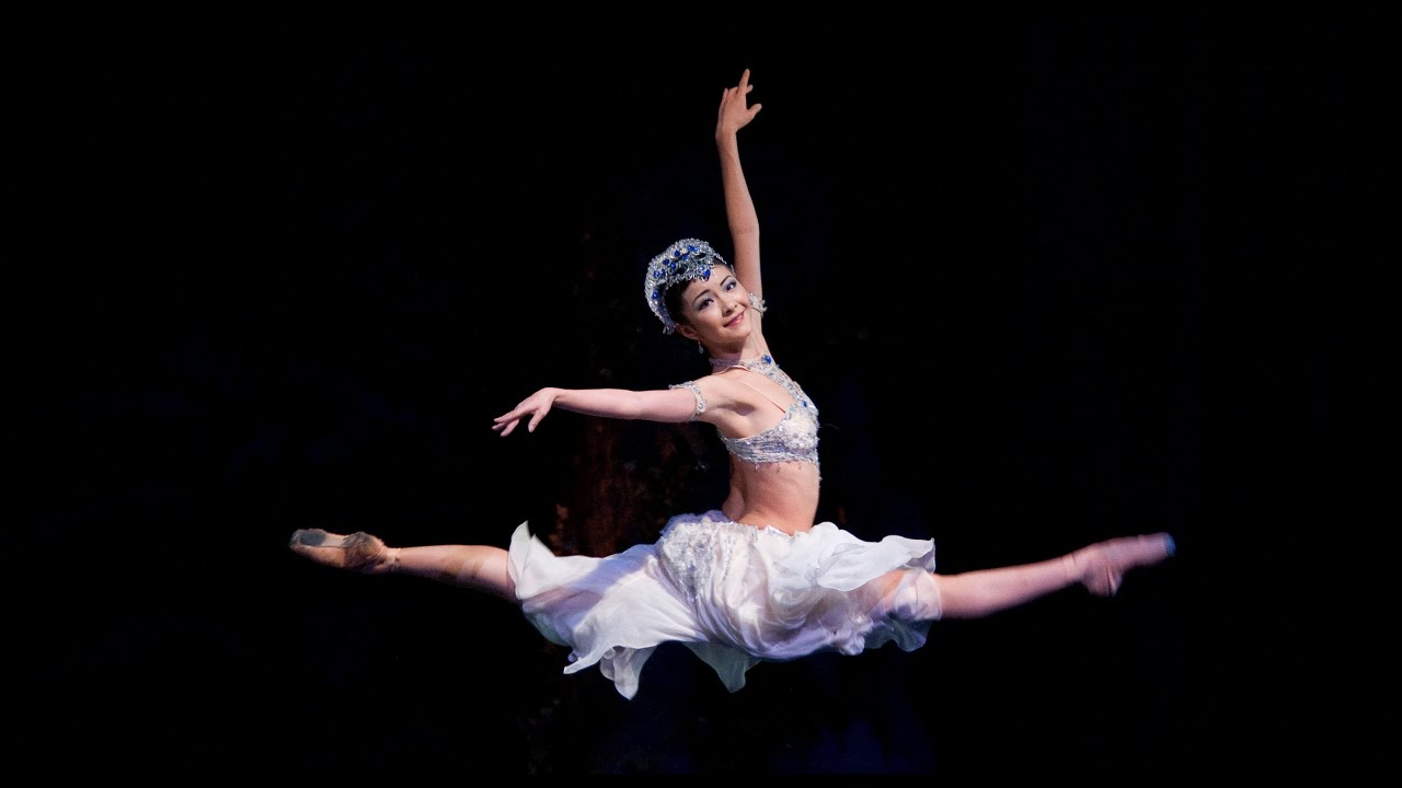 discover ballet a day