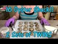 Opening 16 Akoya Oysters - 2 Sets of Lucky TWINS! - Pearl Party Mystery Shuck Exotic Pearl Colors