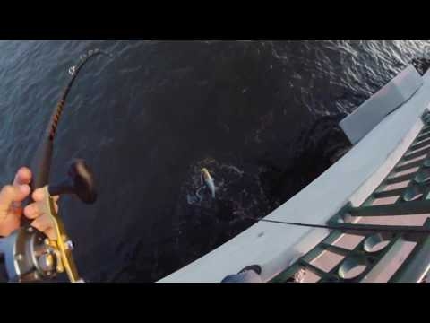gopro snook fishing - first light snook jig - youtube, Reel Combo