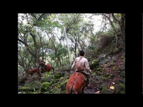 Molokai Mule Ride to Kalaupapa