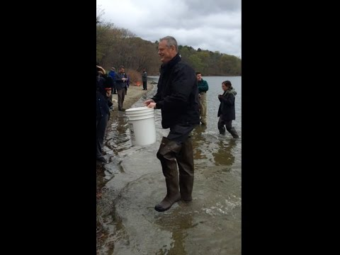 2016-5 MA Governor Charlie Baker and trout stocking