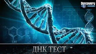 дНК тест - Из чего это сделано .Discovery channel