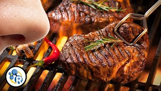 Maillard: The Most Delicious Chemical Reaction In The World