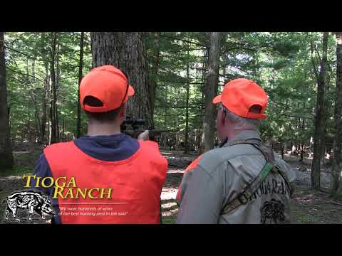 Russian Boar Trophy Hunt - Guided Hunting Trips In PA | Tioga Ranch