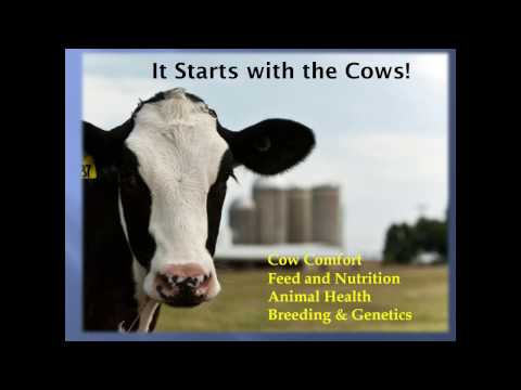 Why Dairy Farmers' Commitment to Animal Care Matters to Consumers and Customers